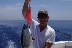 tuna-on-pink-phoenix-1-e1568235821313