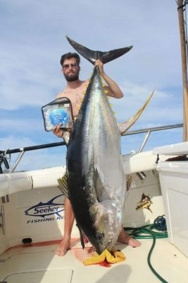 Cow Tuna on MagBay Fluorocarbon