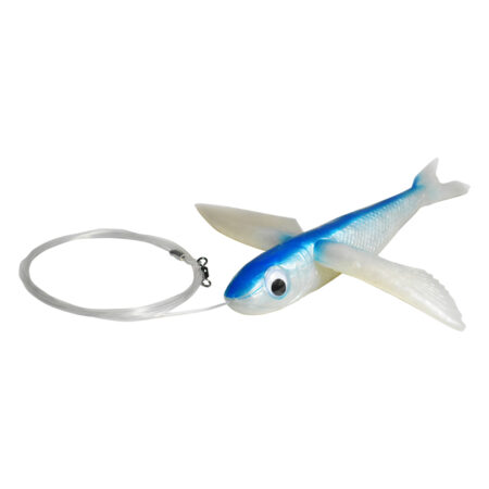 Blue Flying Fish Rigged