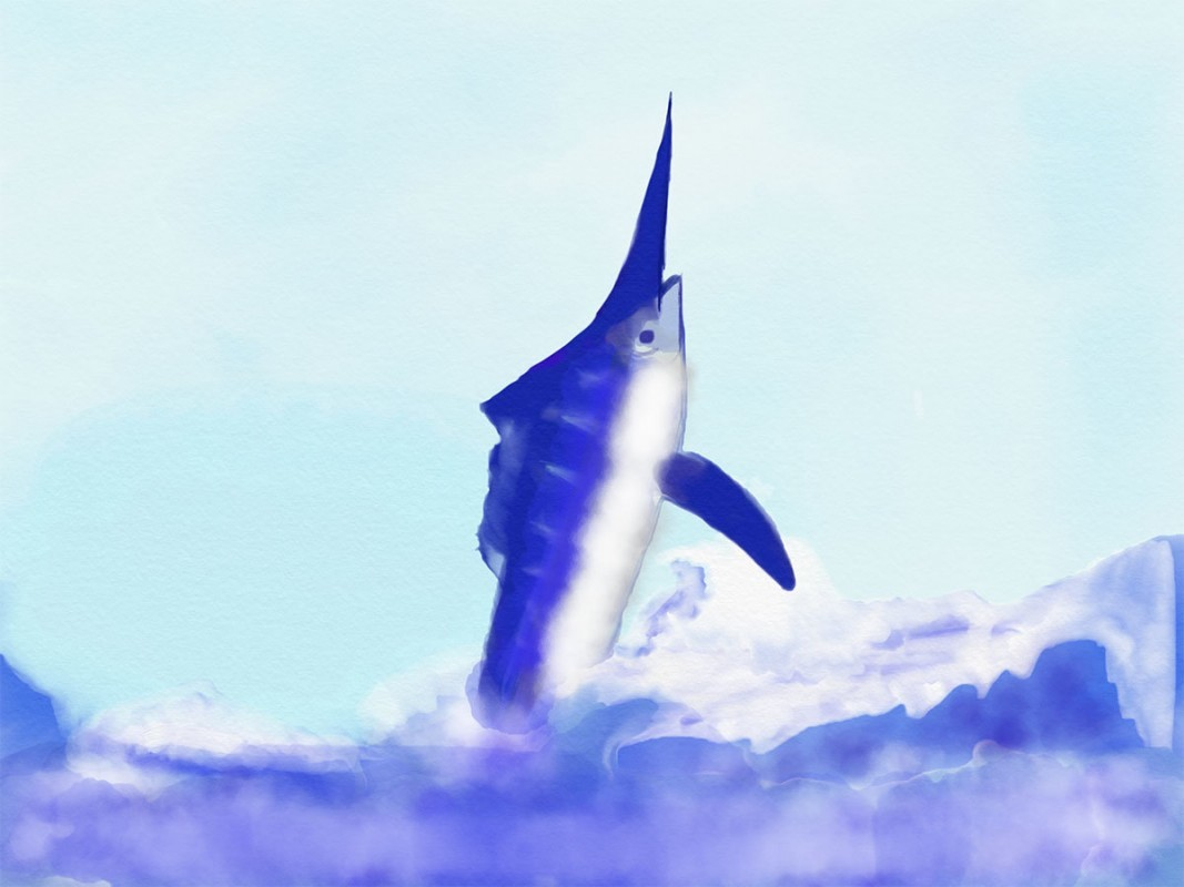 Sheila the Marlin